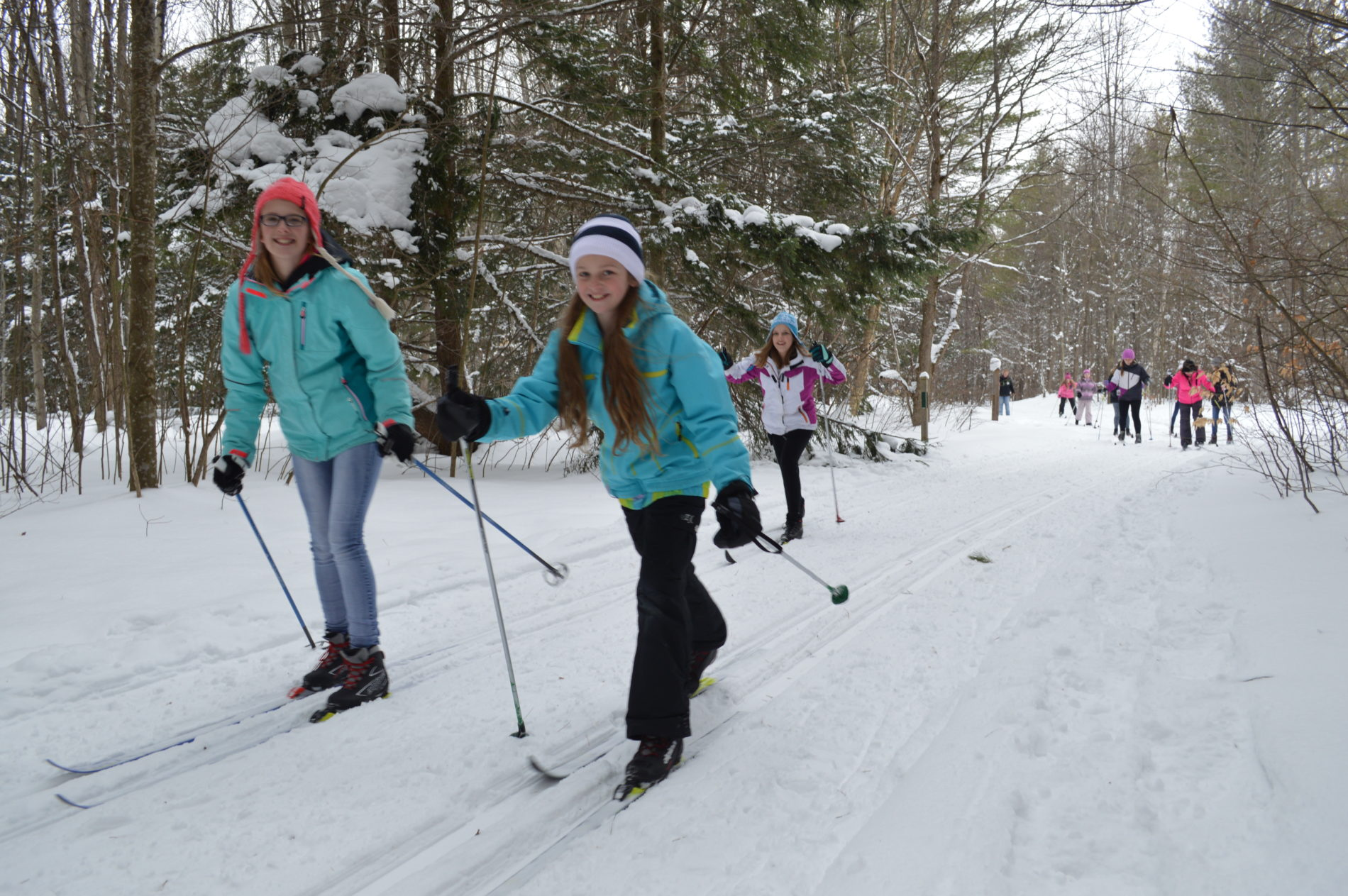 snowshoeing and x-country skiing gaylord michigan