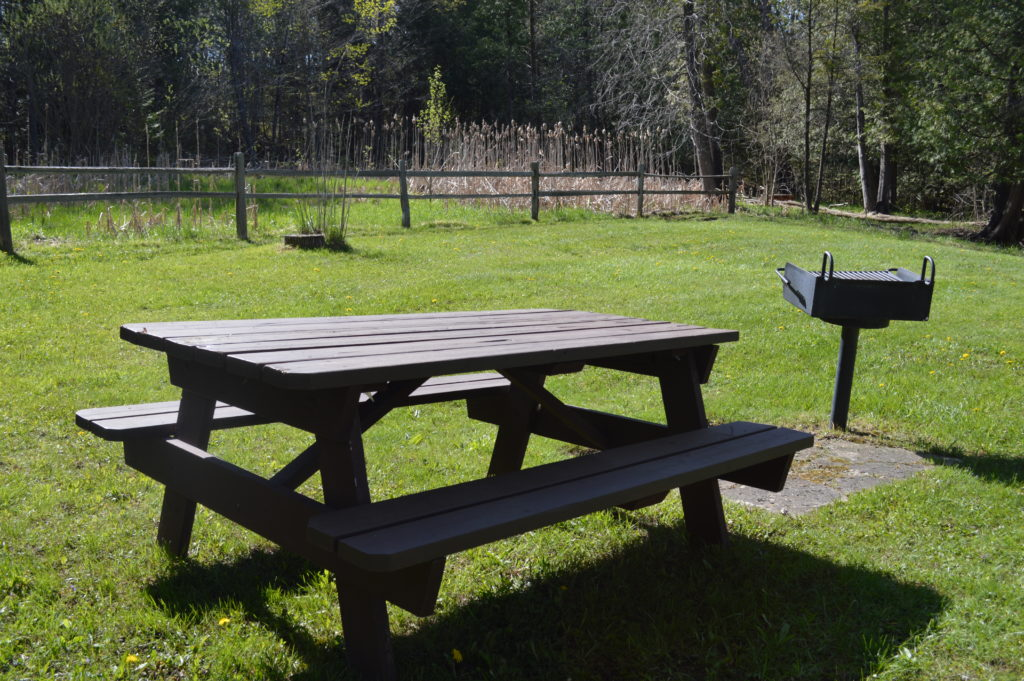 A picnic table and grill await a family for lunch. Photo by Chris Engle