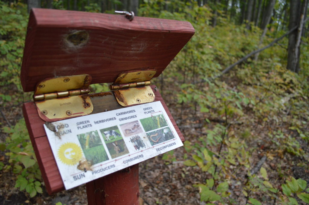 Dozens of interpretive signs can be found along the trail, each sharing some information about plants, animals or other features of the property. Photo by Chris Engle