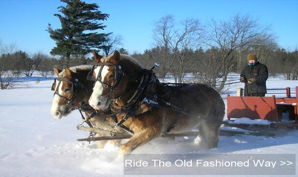 Sleigh Rides Gaylord Michigan