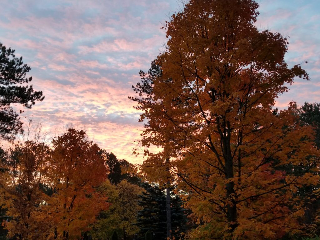 Colorful autumn trees against a sunset in Aspen Park.