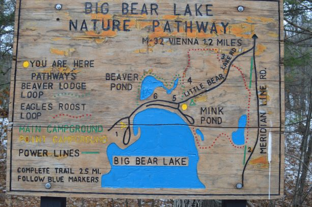 Bear Lake Nature Pathway: Welcome to beaver country! - Gaylord Michigan